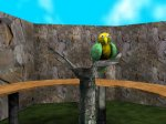 CG zoo bird closeup screenshot